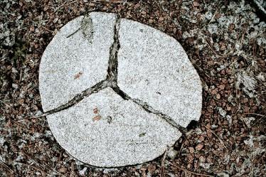 Broken log pieces make peace sign on Pannellbytes forgiveness blog post