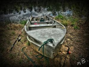 Georgia, jon boat, michael braswell, pannellbytes, Duane Pannell, fishing, Redneck Russian